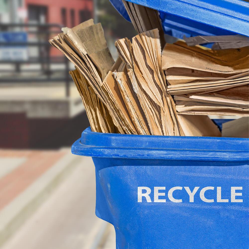 """Cajas de cartón aplanadas colocadas en un contenedor azul marcado """"reciclar"""""""